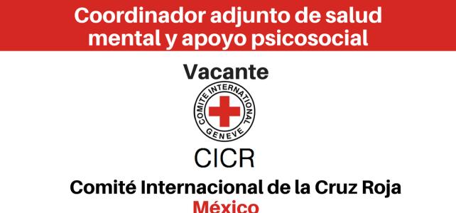 Vacante Coordinador adjunto de salud mental y apoyo psicosocial (Contratación nacional) CICR