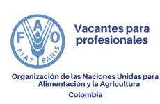 Vacantes para profesionales con la FAO