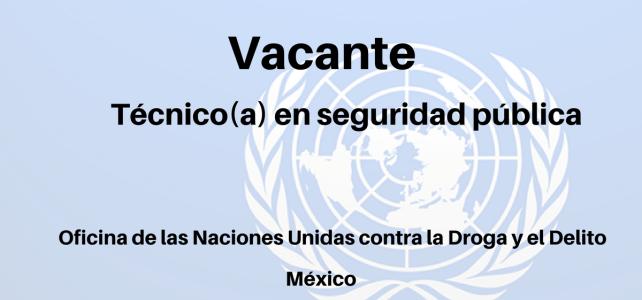 Vacante Técnico en seguridad pública UNODC