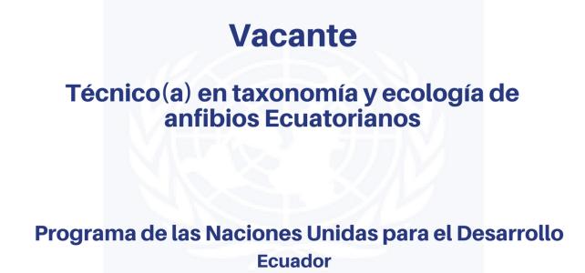 Vacante Técnico(a) en Taxonomía y Ecología de Anfibios Ecuatorianos PNUD