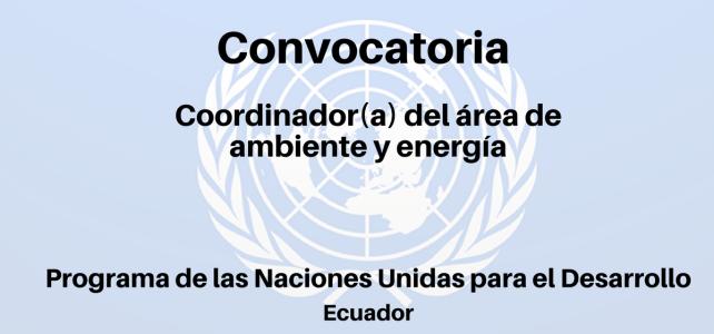 Convocatoria Coordinador(a) del Área de Ambiente y Energía PNUD