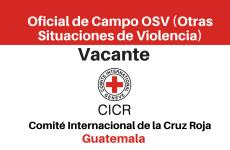 Vacante Oficial de Campo OSV (Otras Situaciones de Violencia) CICR