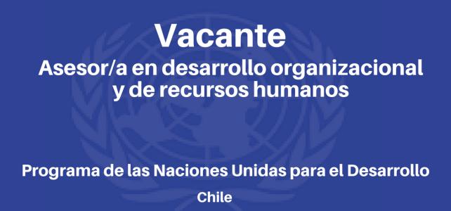 Vacante Asesor/a en Desarrollo Organizacional y de recursos humanos PNUD