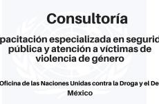 Consultoría capacitación especializada en seguridad pública y atención a víctimas de violencia de género UNODC