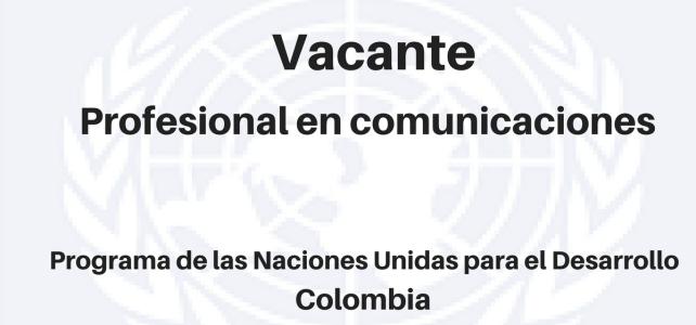 Vacante Profesional en Comunicaciones PNUD