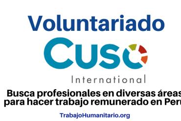 Voluntariado con Cuso
