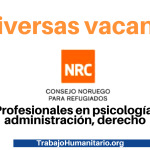 NRC busca profesionales