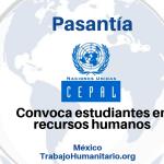 Pasantía con Naciones Unidas