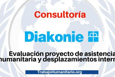 Consultoría con Diakonie