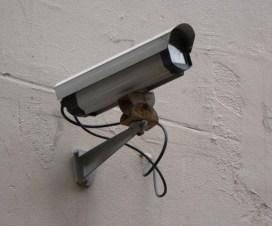 vigiladores para empresa privada trabajo tucuman
