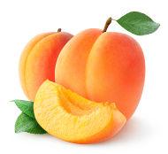 http://mundoeducacao.bol.uol.com.br/upload/conteudo/apricot.jpg