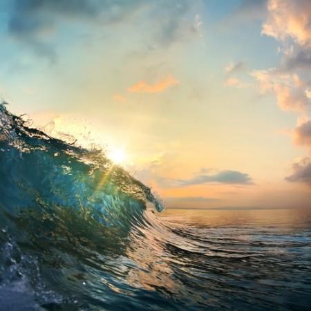 Foto: Willyam Bradberry / Shutterstock.com