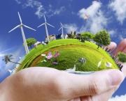 Tudo Sobre Meio Ambiente (6)
