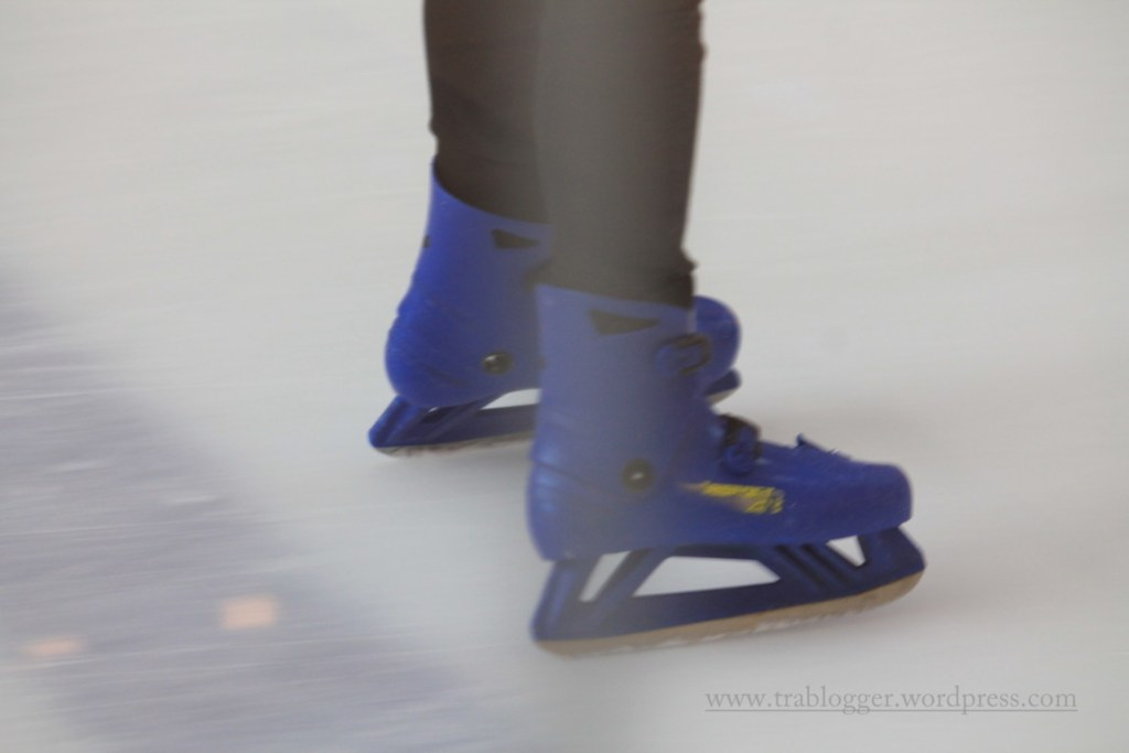 Legs of Dubai Ice Rink 5