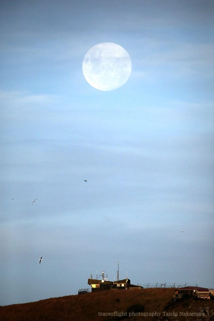 Supermoon above Royal Albatross Centre