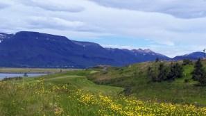 Mountain views at Korpúlfsstaðir