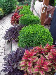 gardening5
