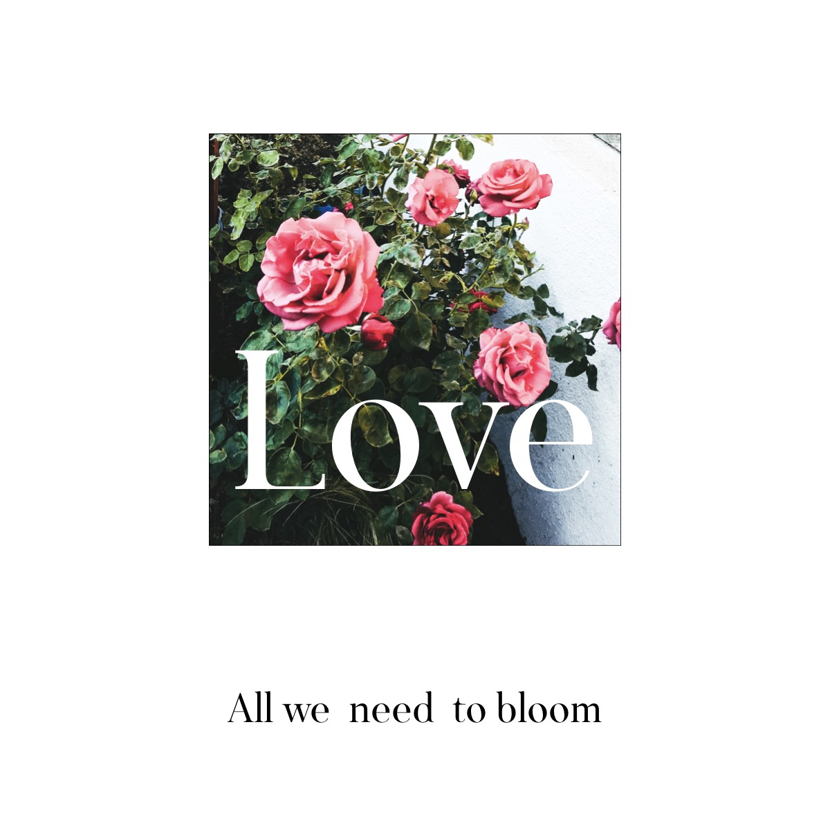 Bloom with love!