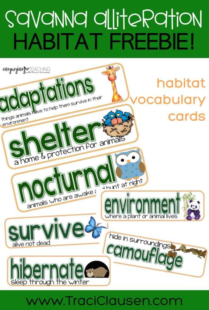 habitat vocabulary cards