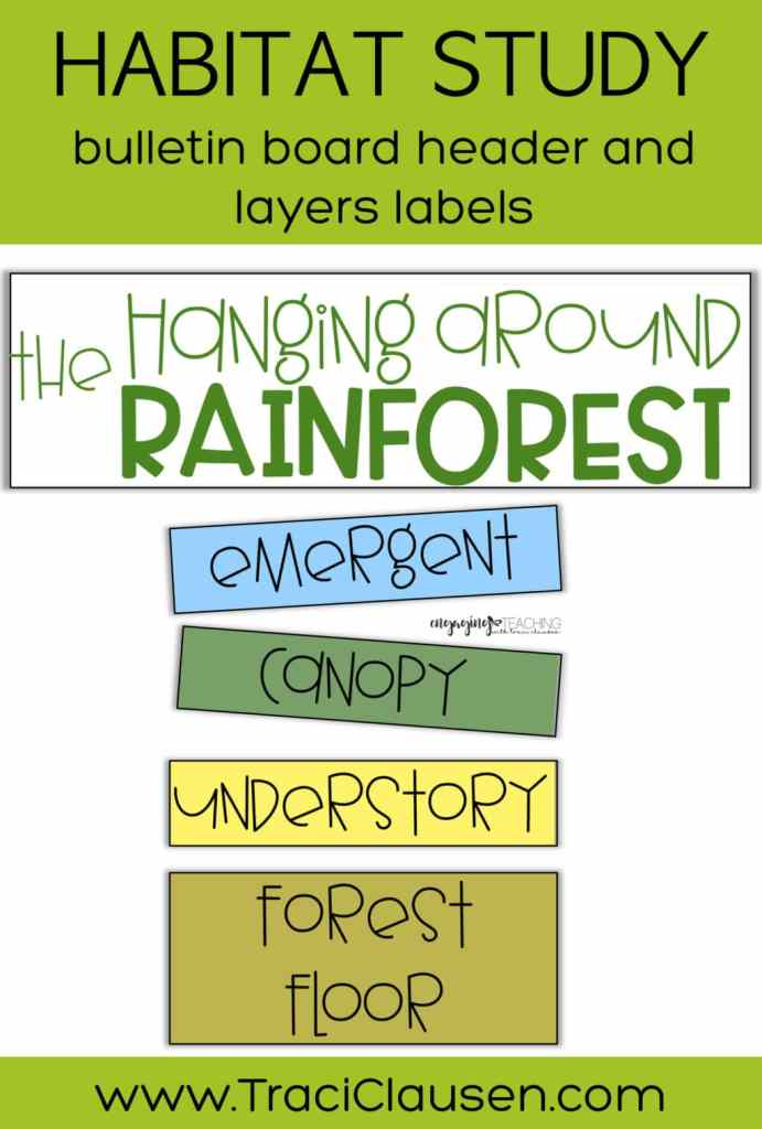 Bulletin board header and labels for rainforest