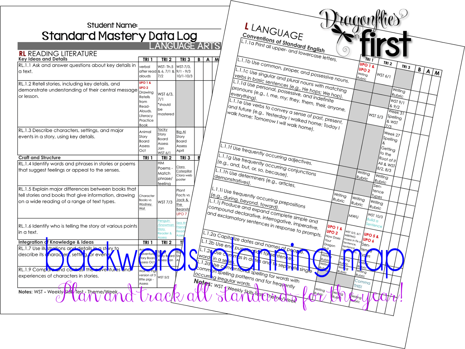 Year Curriculum Mapping and Planning