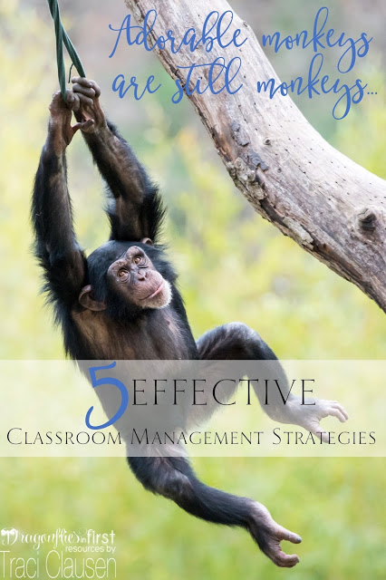 5 Effective Classroom Management Strategies