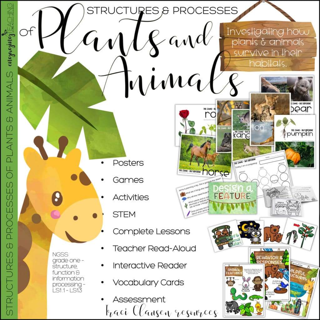 First Grade NGSS Life Science - Plants and Animals [ 1024 x 1024 Pixel ]