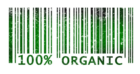 Organic Food: When is it important to buy?
