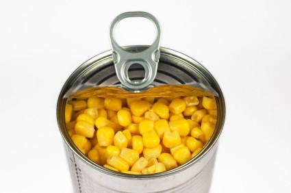 Fertility, Disease, Food and BPA