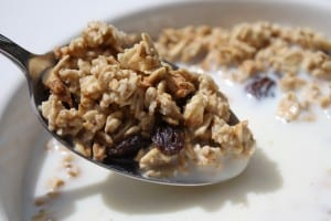 Breakfast Cereal_granola