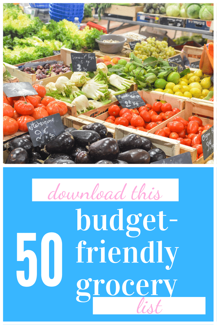 budget friendly groceries