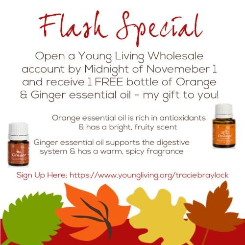 Flash Special November