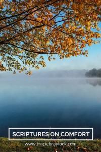 Scriptures on Comfort | Tracie Braylock