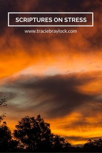 Scriptures on Stress | Tracie Braylock