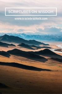 Scriptures on Wisdom | Tracie Braylock