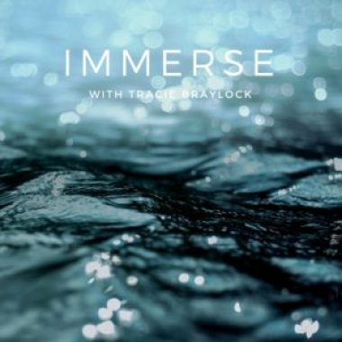 Immerse Kit | Tracie Braylock