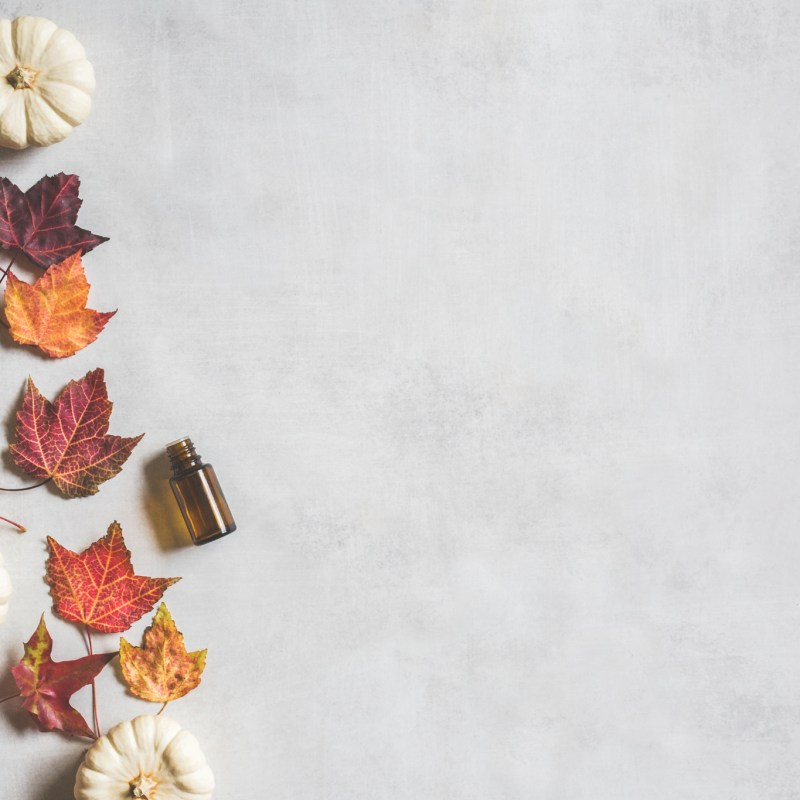 Fall Inspired Diffuser Blends