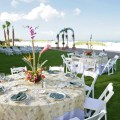 Best wedding venues in tampa bay for 100 200 guests wedding planners