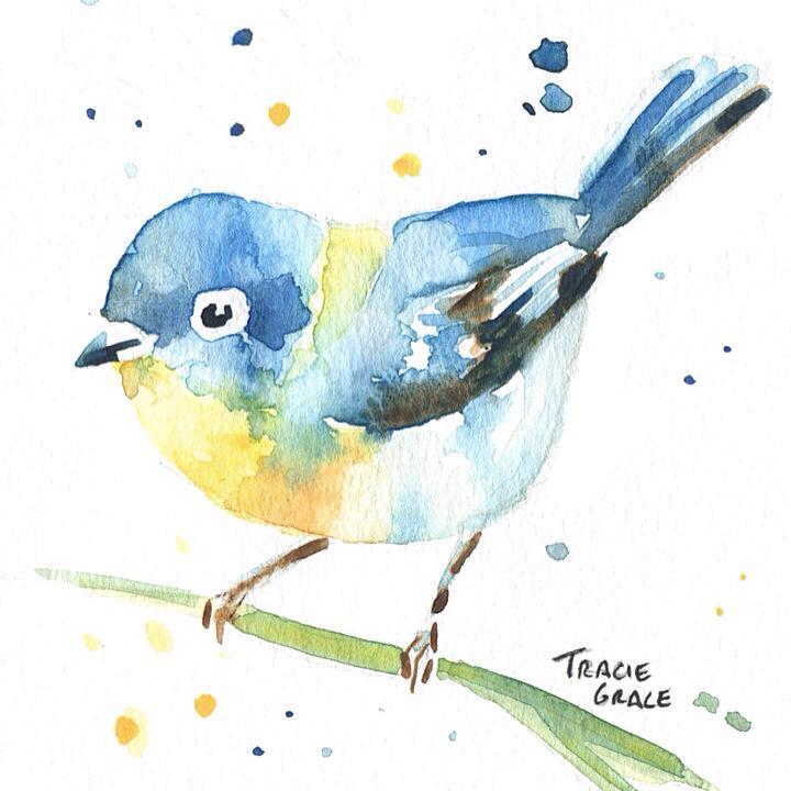Bird (web)