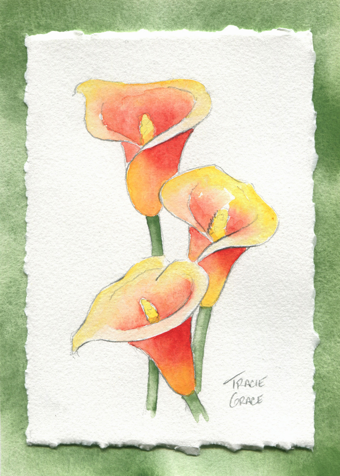 Upcoming Watercolor Classes: June 2016