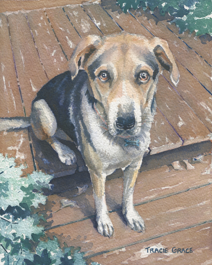"Dog Portraits And A ""TREE-ific"" New WATERCOLOR CLASS!"