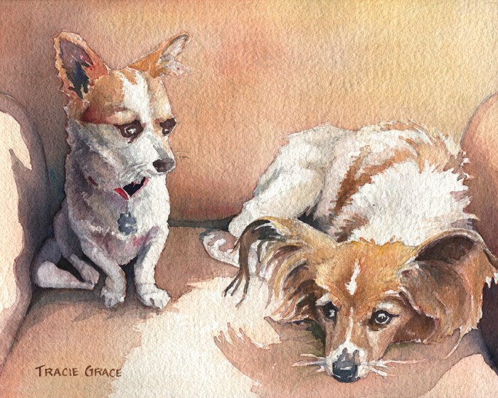 Dog Portrait of a Chihuahua and a Papillon