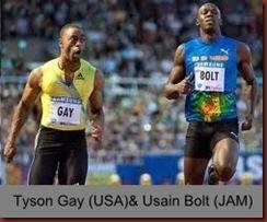 Gay v Bolt