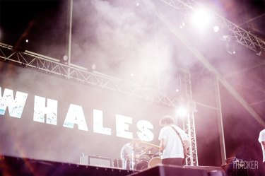 Whales @ NOS Alive