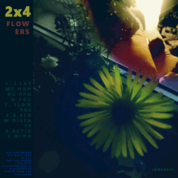 frontcover 2x4 - flowers