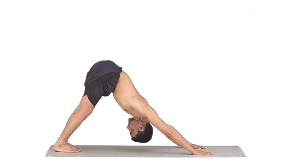 Download Yoga Apps