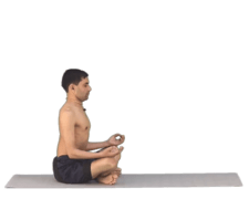Easy Pose Yoga