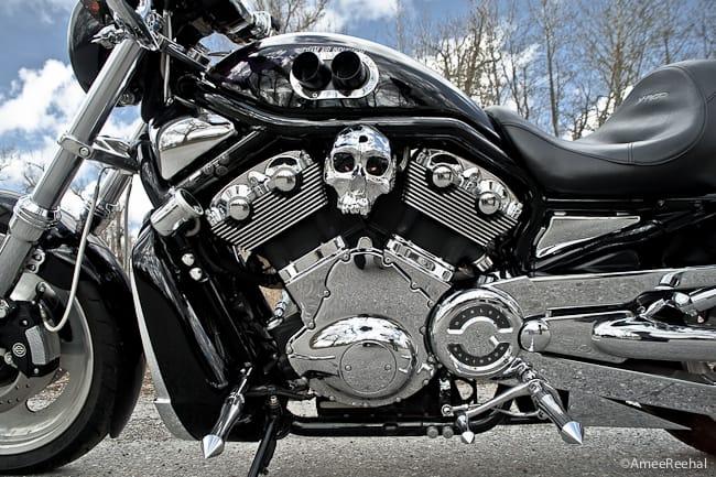 Revolutionary A Pair Of Custom Harley Davidson V Rod