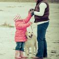 Umgang mit Kind & Hund