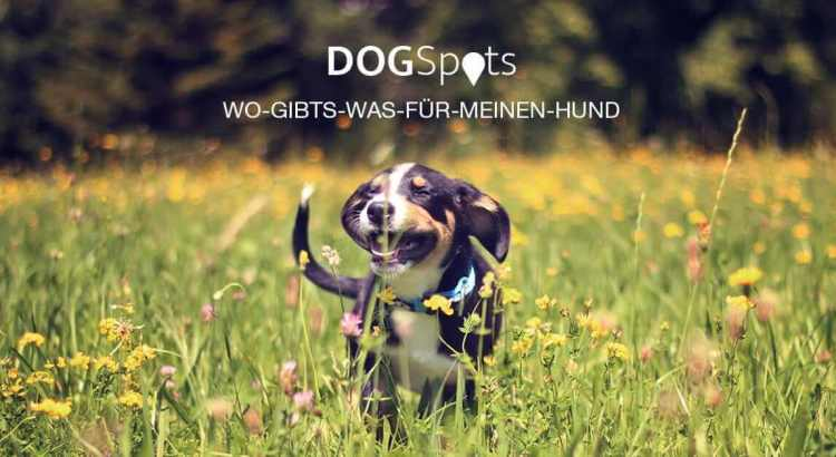 DOGSpots